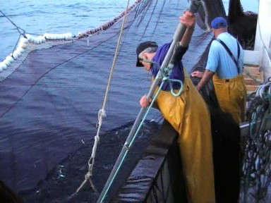 ergonomia sector pesquero