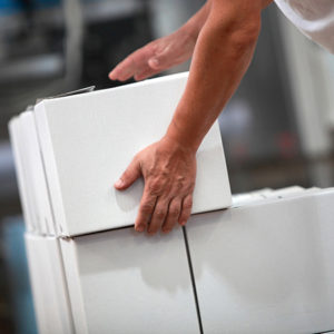 riesgos ergonomicos levantamiento manual cargas cenea
