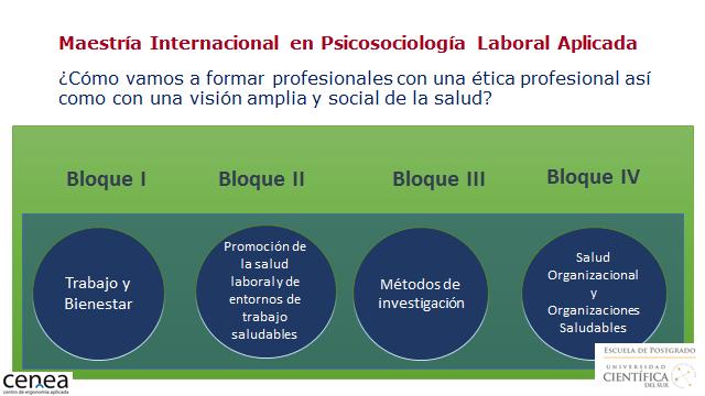 Maestria Psicosociologia Laboral - CENEA -