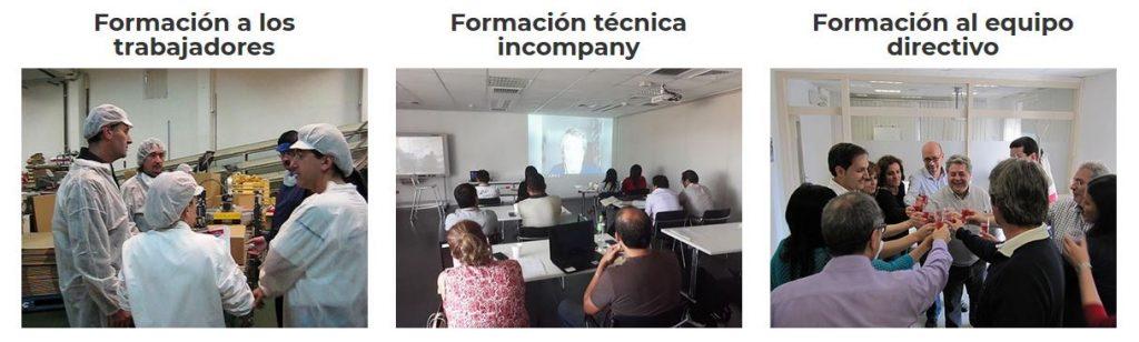 programas ergonomia para empresas