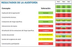 Auditoría gestión riesgos ergonómicos