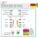 evaluaciones ergonomicas puestos de trabajo