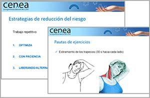 Programas de ejercicios ergonomicos y hábitos posturales