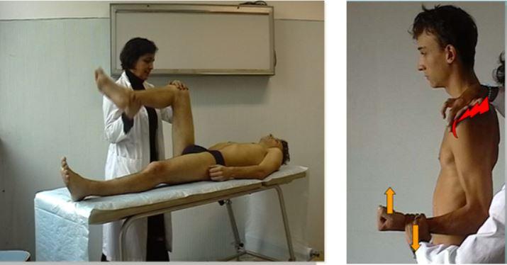 vigilancia medica y gestion trastornos musculoesqueleticos laborales
